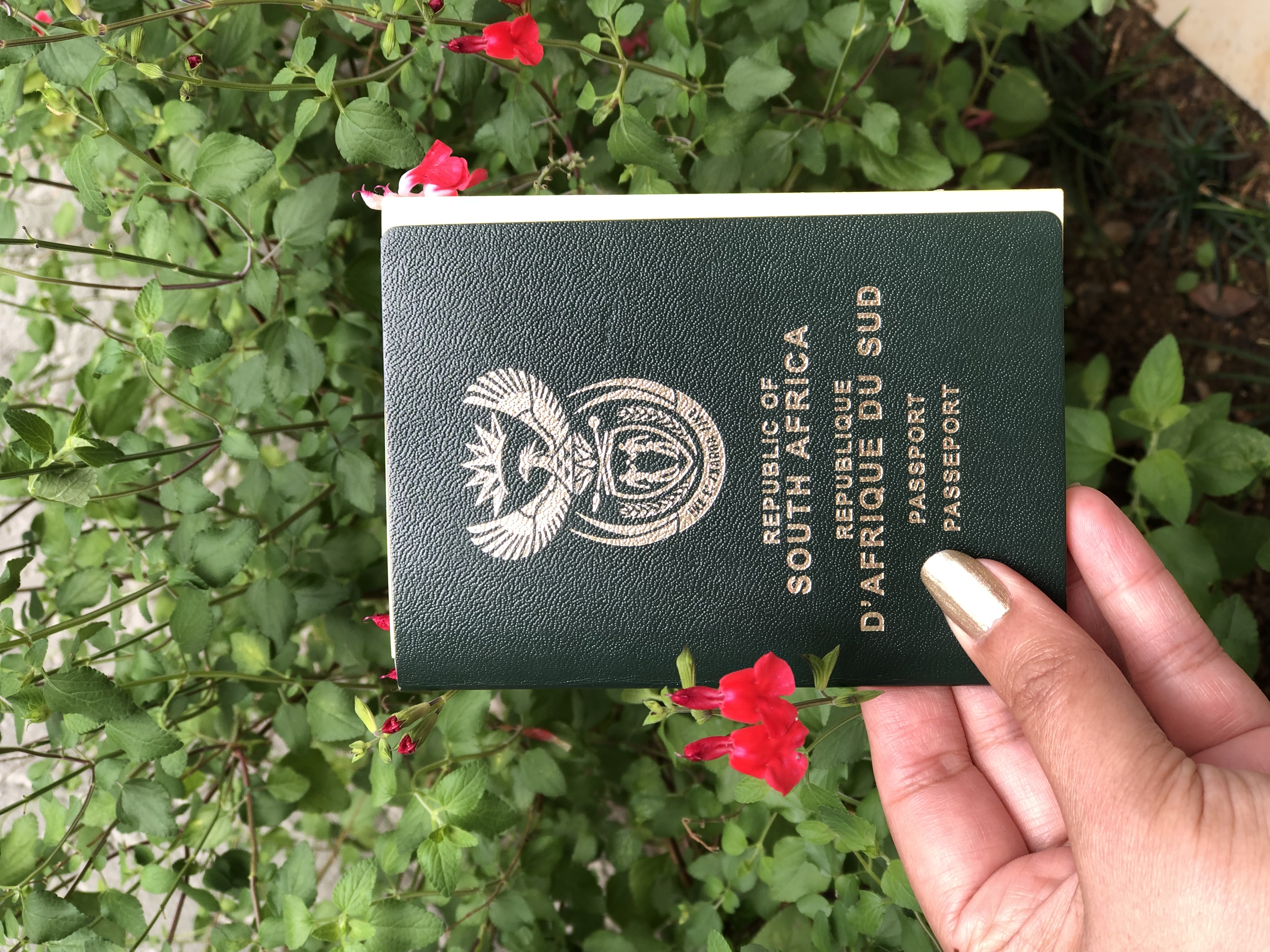 You are currently viewing Travel- how to apply for a Passport